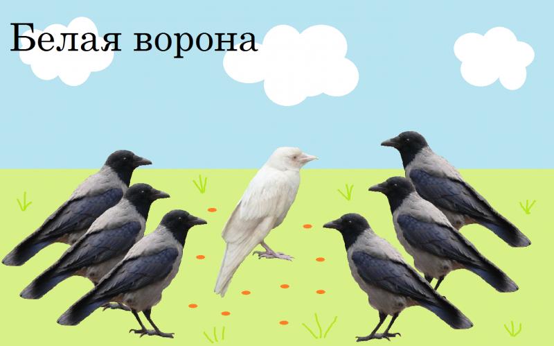 Что делать если я белая ворона в классе